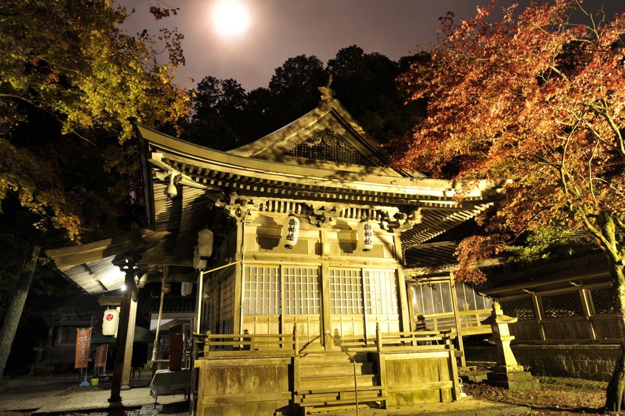11月15日の養父神社の紅葉(夜間ライトアップ)
