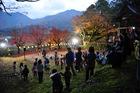 11月19日の養父神社の紅葉(夜間ライトアップイベント)
